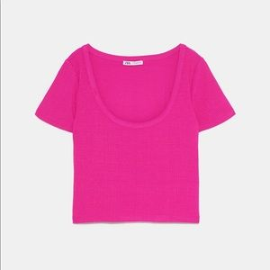Fuschia pink ribbed cropped t-shirt
